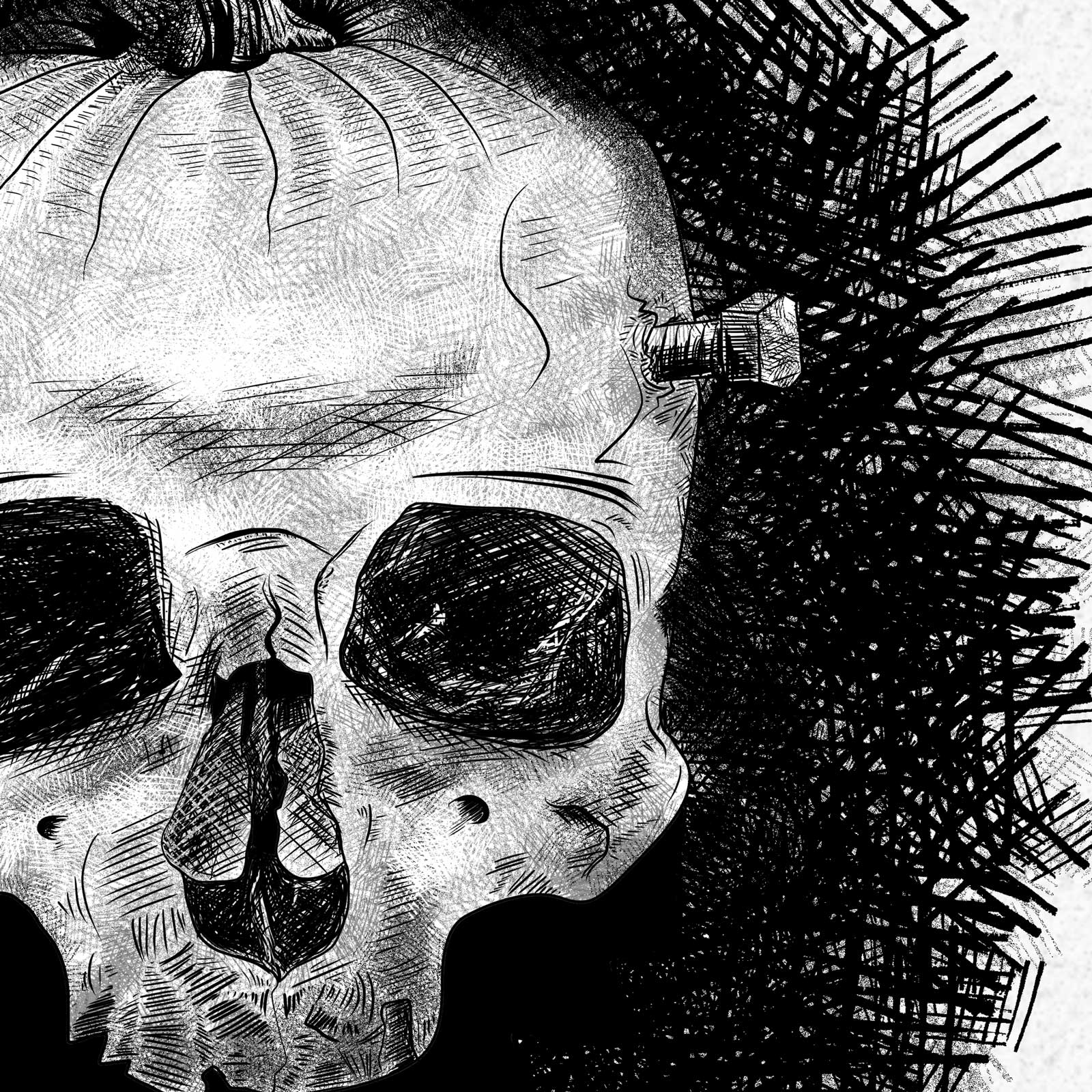 Pumpkin Skull Illustration