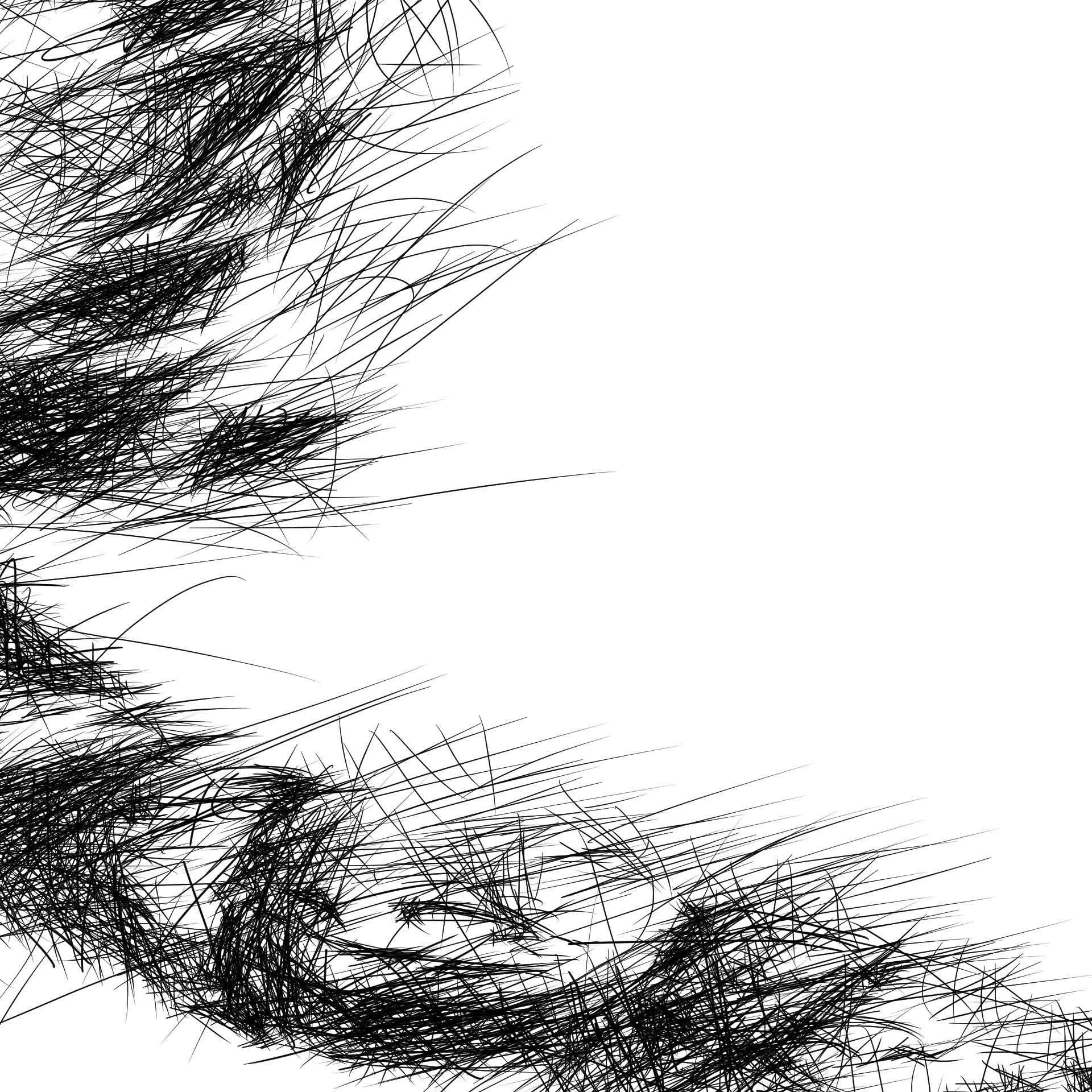 Hairy spider digital pencil line drawing ציור בעיפרון דיגיטלי עכביש closeup3
