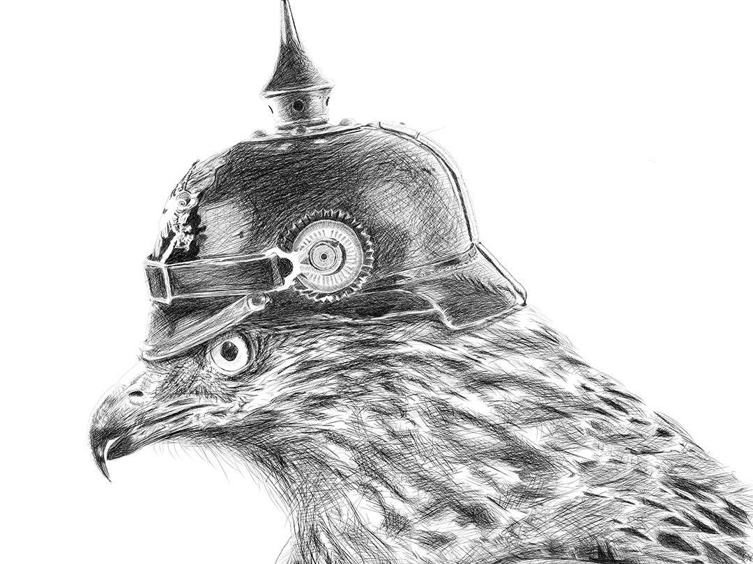 Fighter Falcon