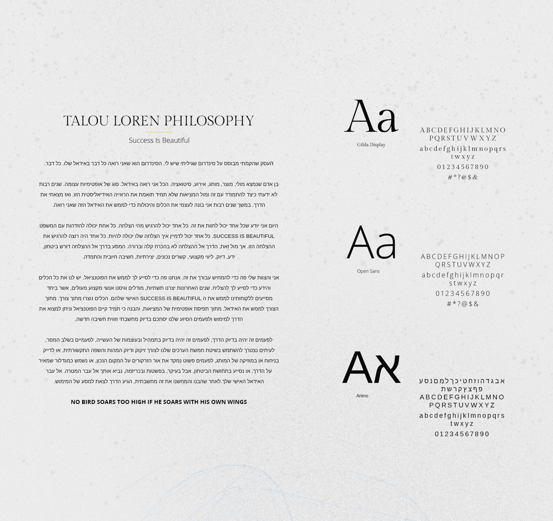 Web branding entrepreneur מיתוג אינטרנט יזם TalouLoren